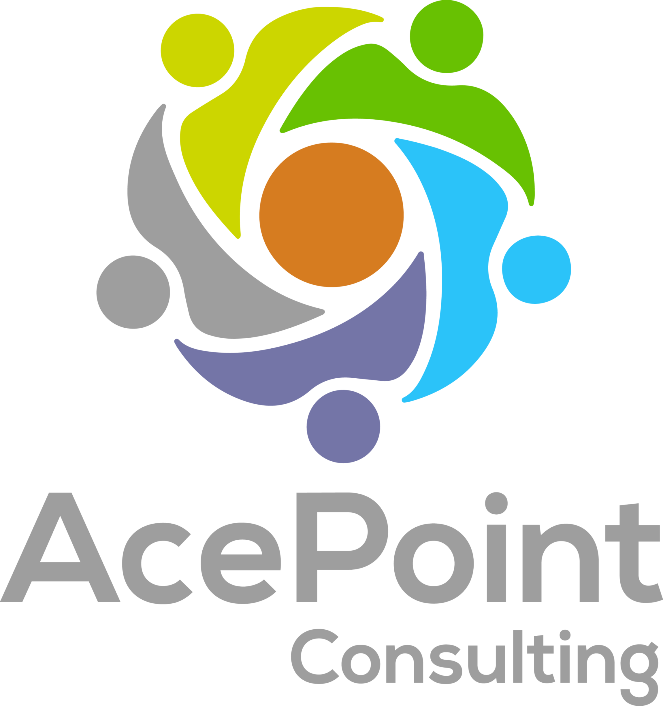 Ace Point Consulting
